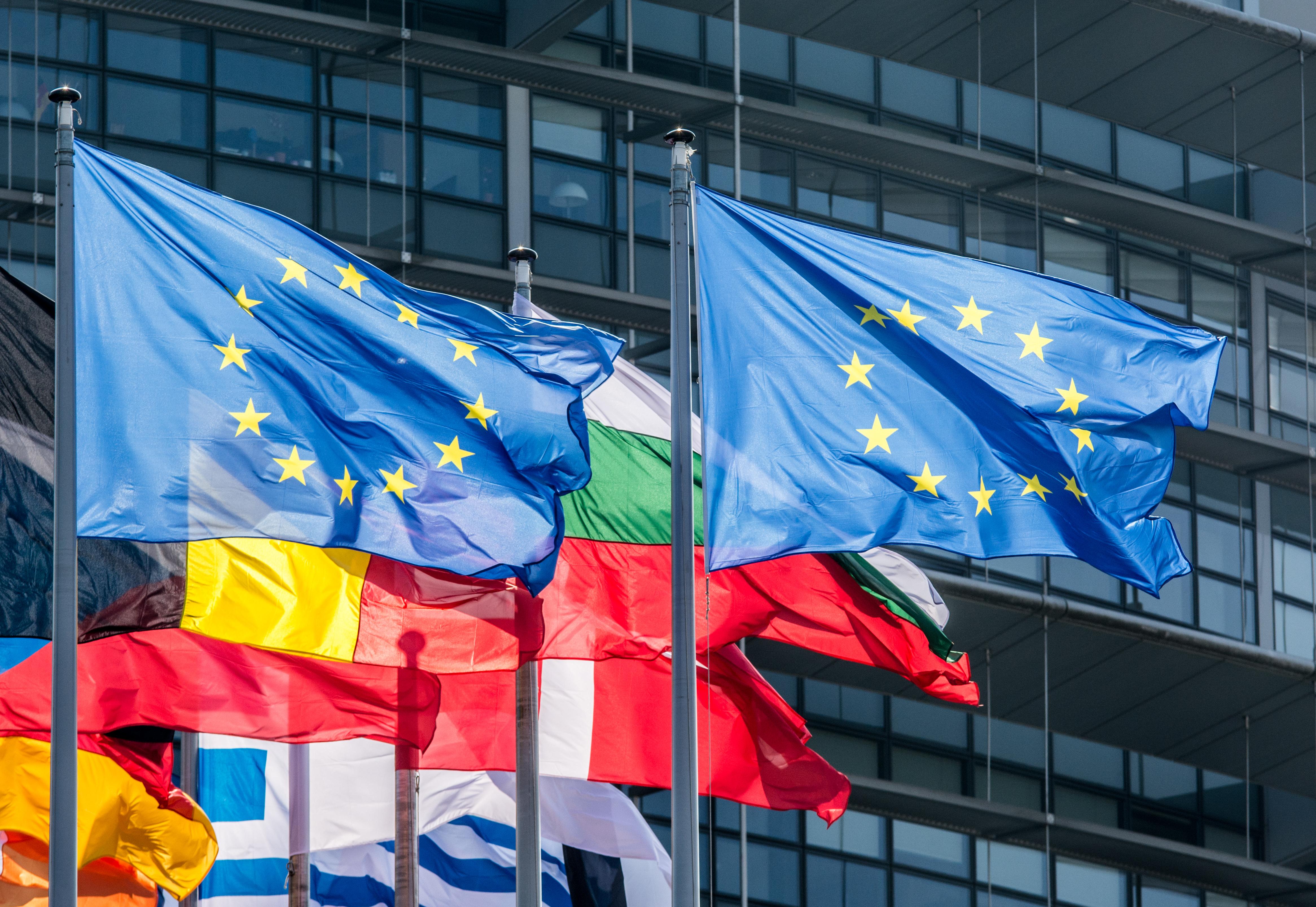 Una visita al Parlamento Europeo en Estrasburgo - Alemania Circuito Lo Mejor de la Selva Negra