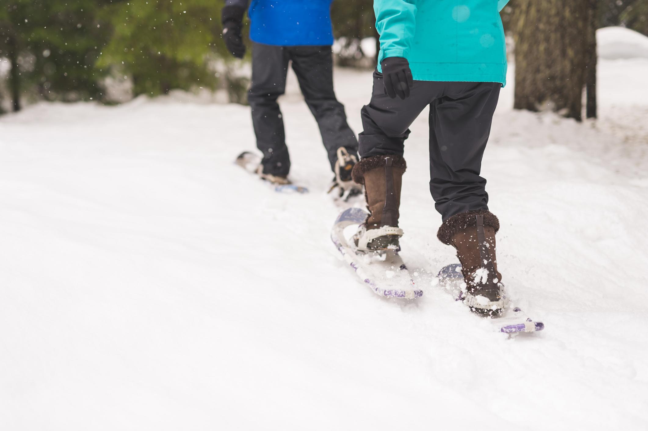 Senderismo con raquetas de nieve - Finlandia Circuito Laponia y Ruka