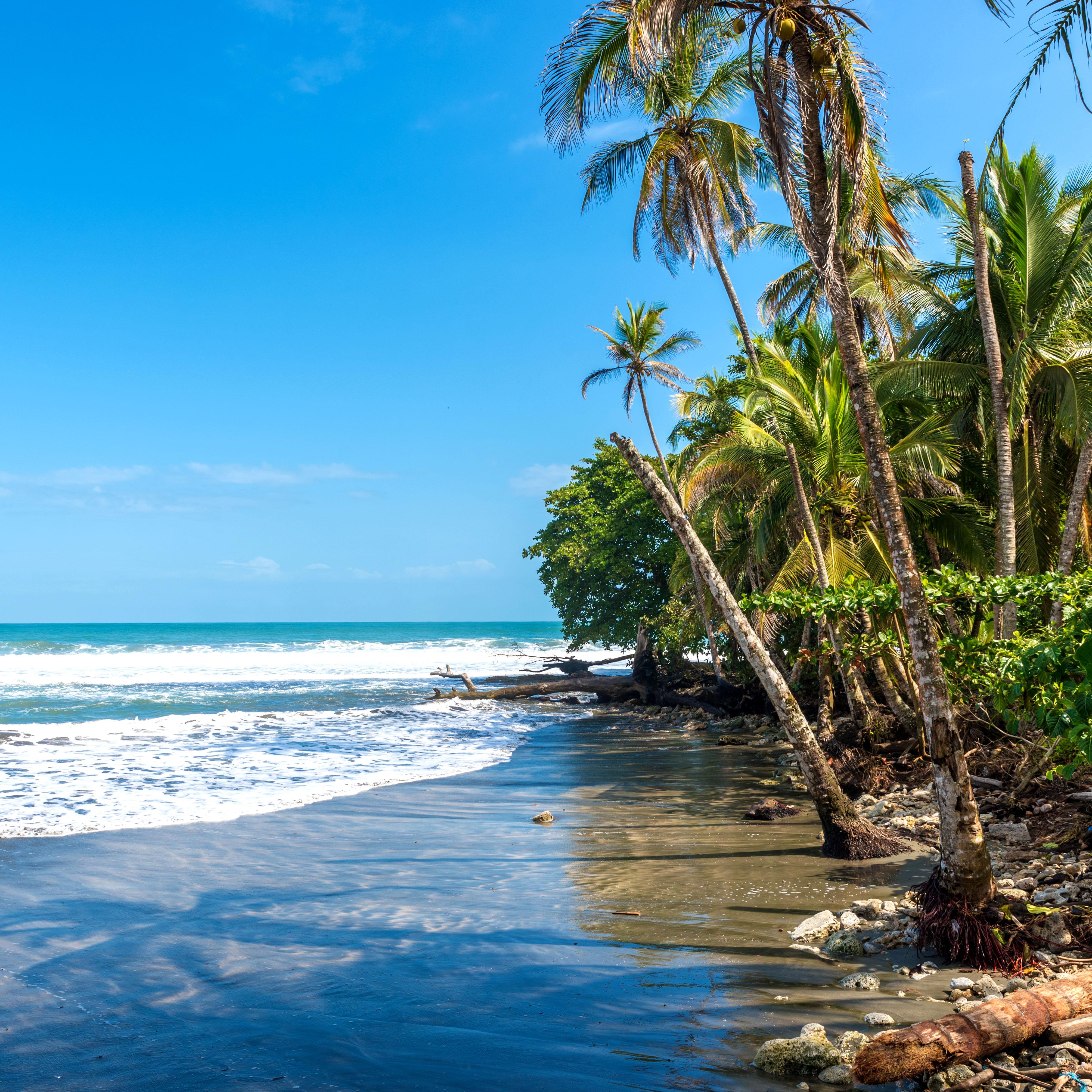 Rastafaris, playas de arena negra y excelente comida en un pueblo muy pintoresco - Costa Rica Gran Viaje Costa Rica Express con Manuel Antonio