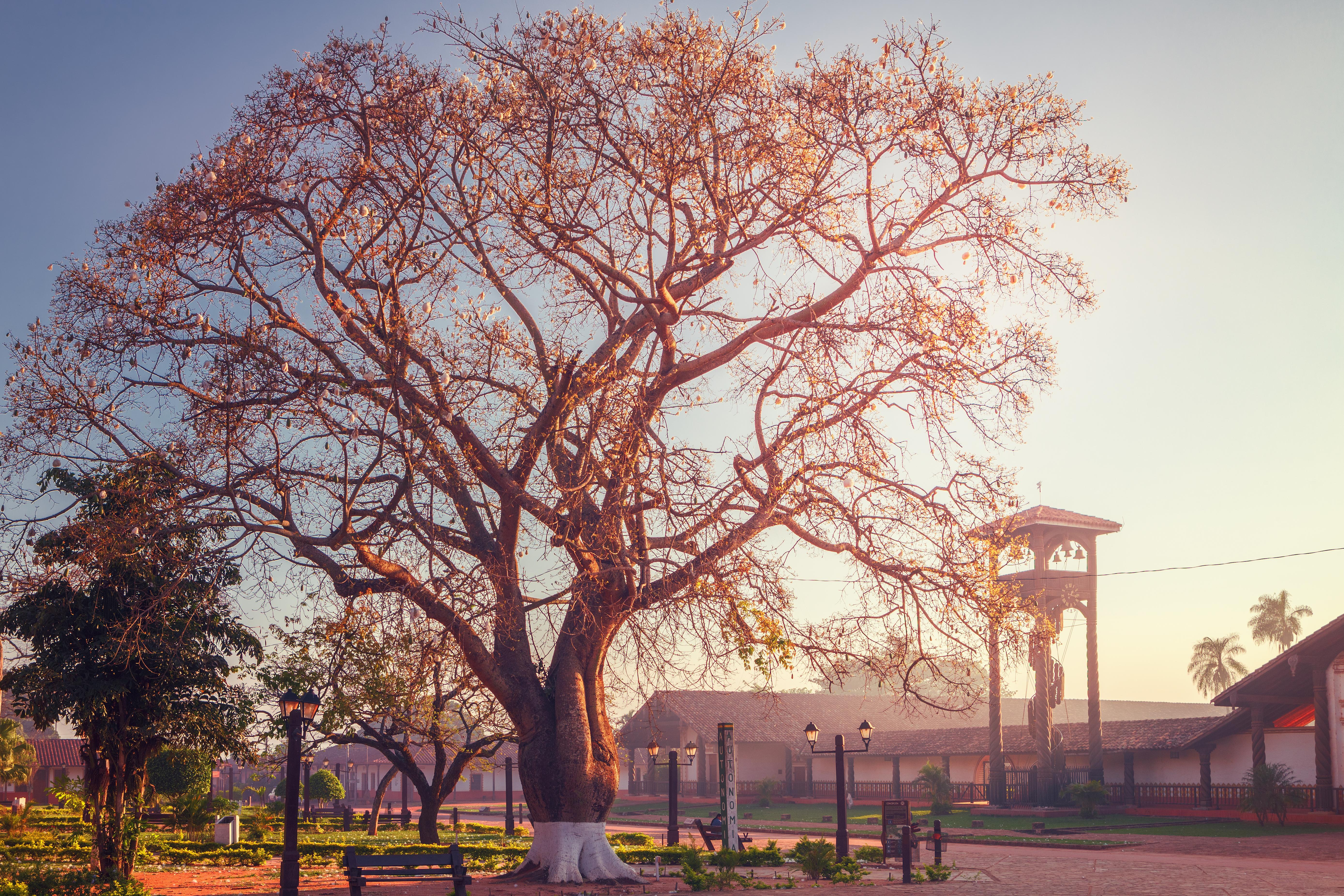 Visita 360º a la Plaza Central - Bolivia Gran Viaje Lo mejor de Bolivia