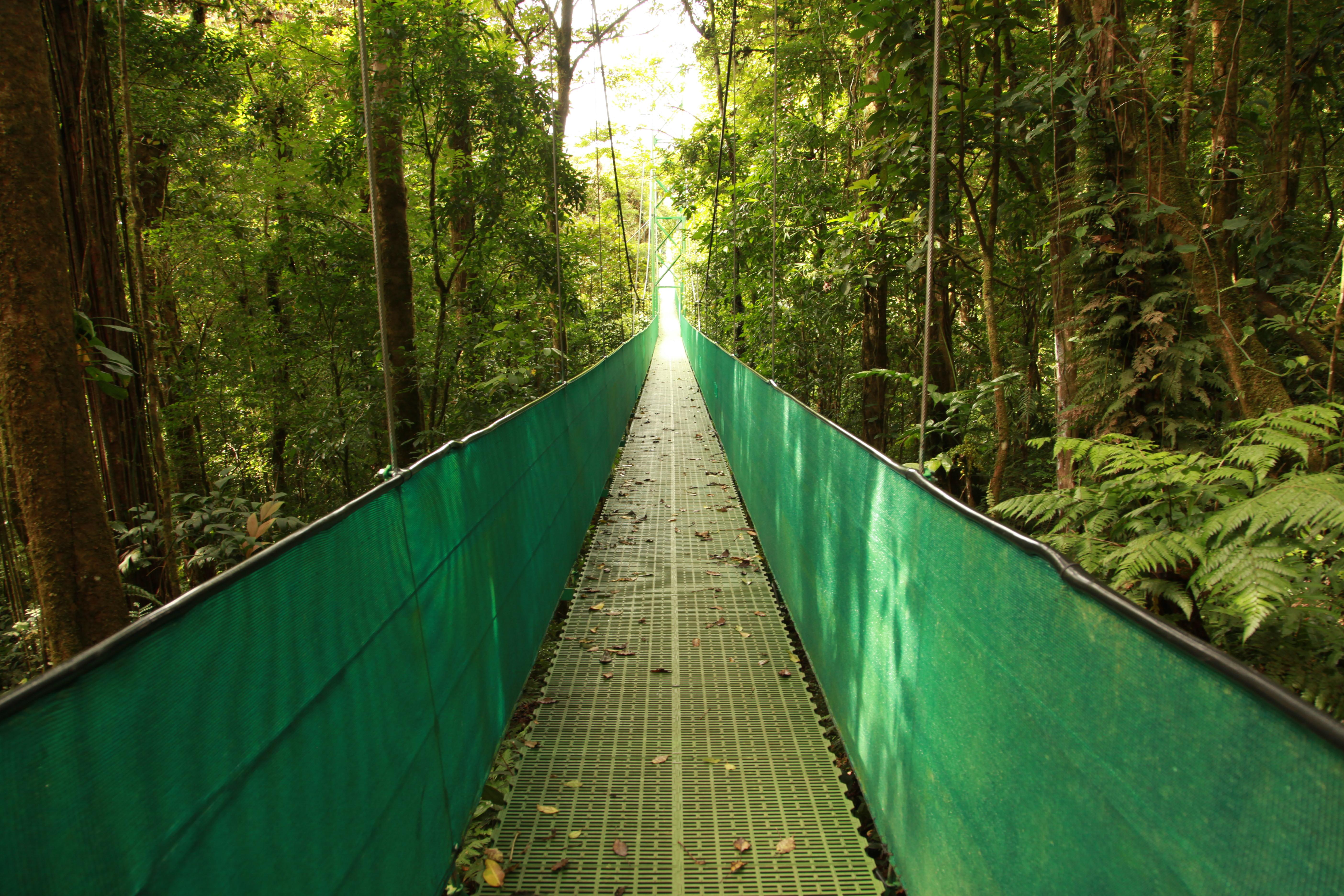 Disfruta de una jornada de lo más variada en Selvatura Park - Costa Rica Gran Viaje Tortuguero, Arenal y Monteverde