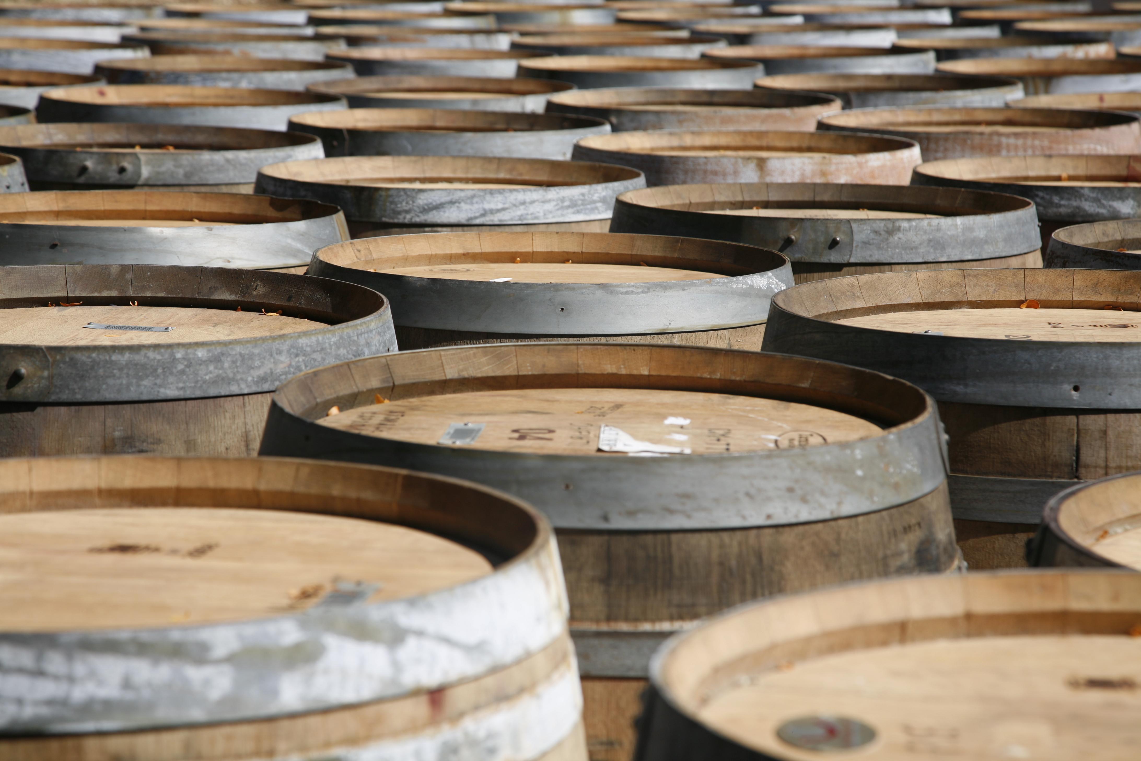 Los vinos de Alsacia - Alemania Circuito Ruta Romántica, Selva Negra y Alsacia