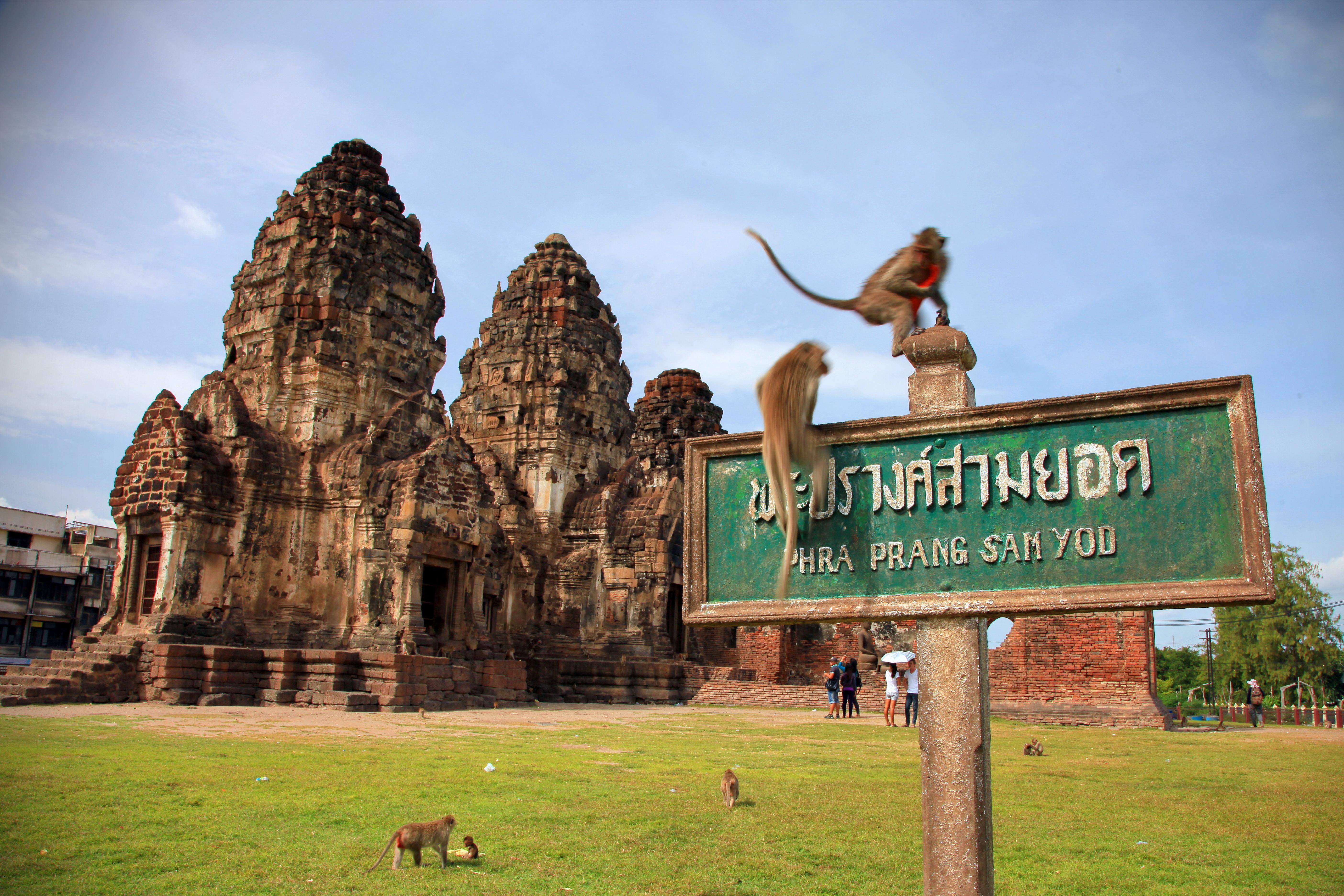 Una visita inolvidable a la Ciudad de los Monos - Tailandia Gran Viaje Tailandia al completo