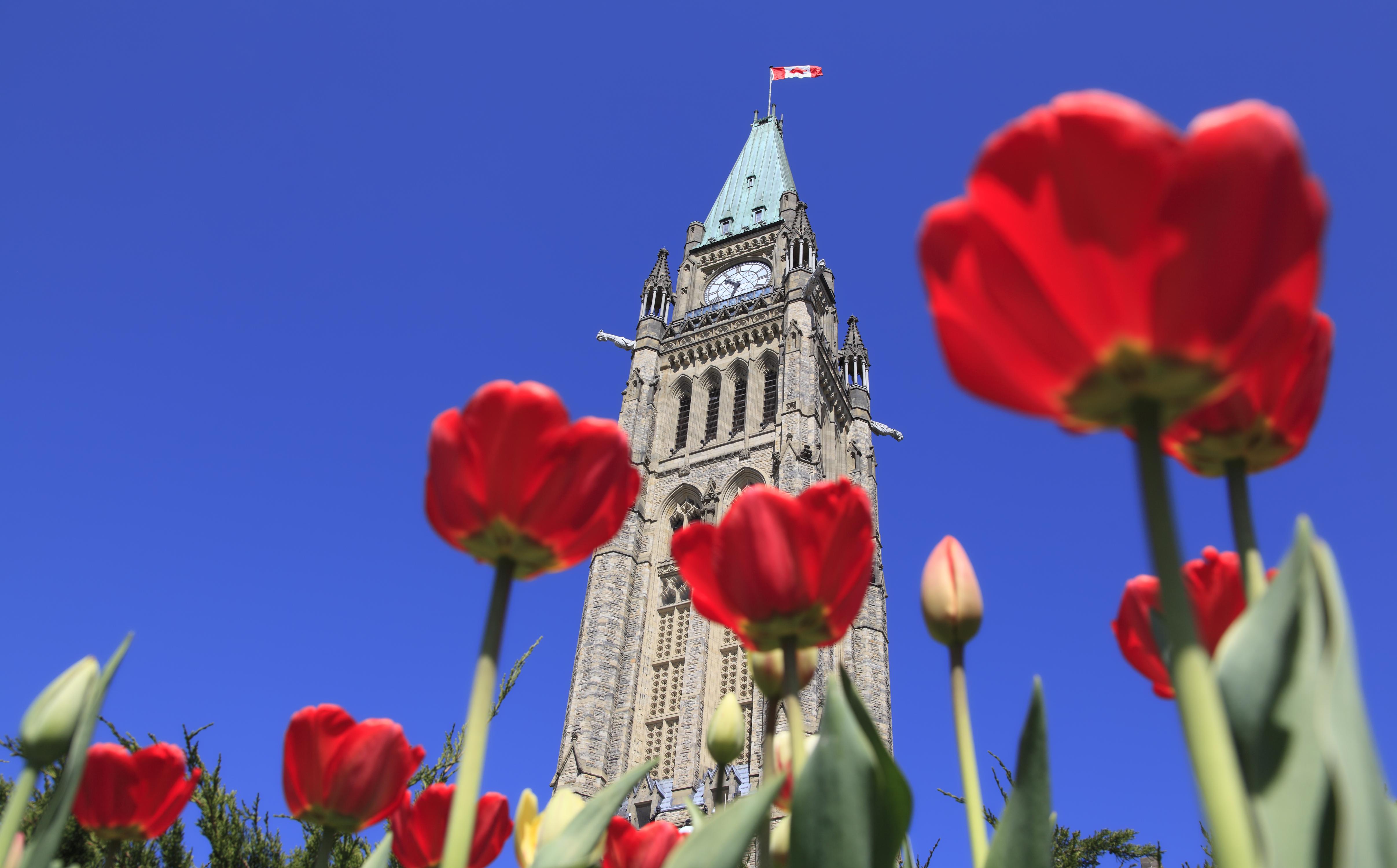 Una experiencia muy floral - Canadá Gran Viaje Canadá Clásico