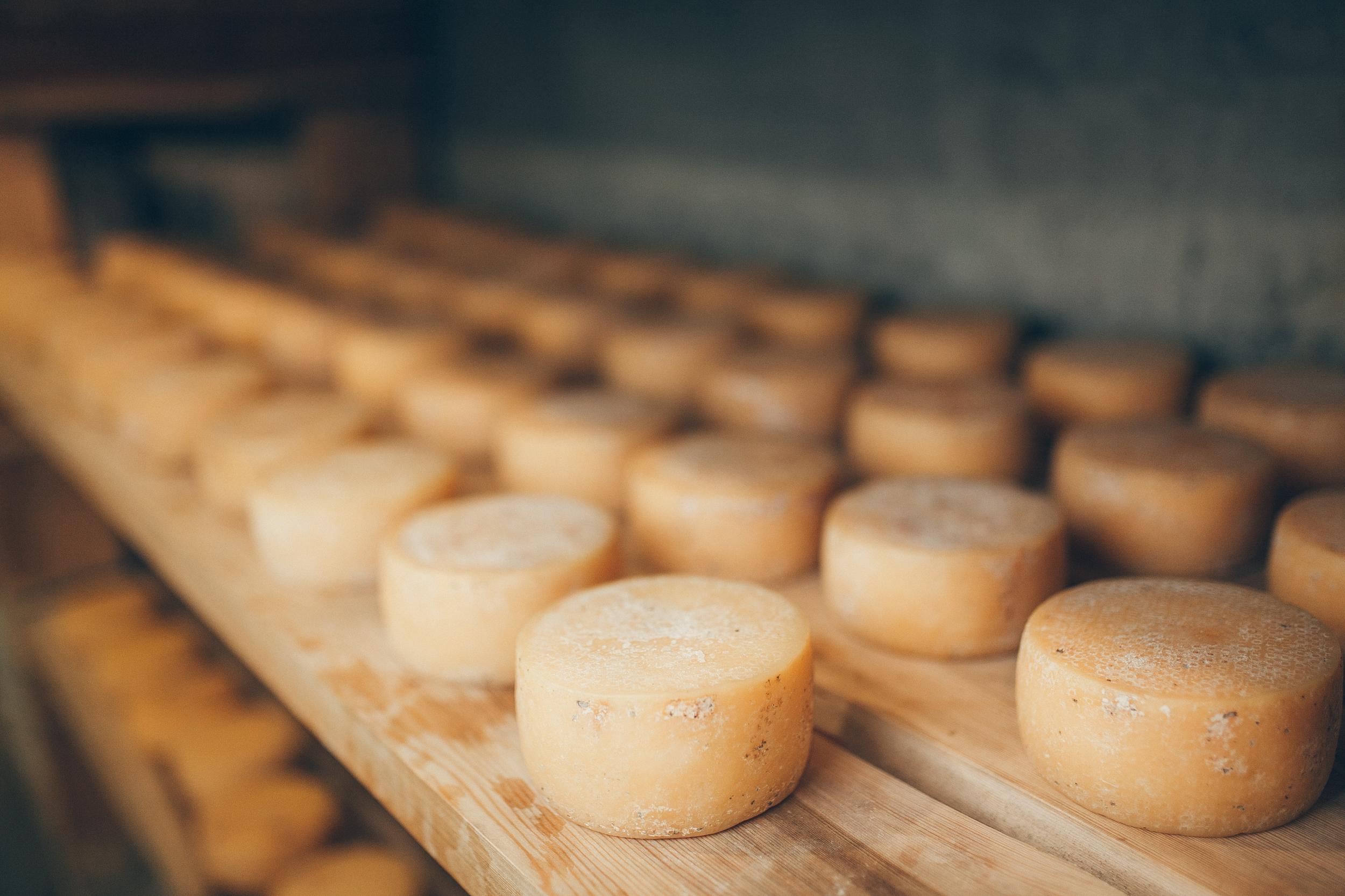 El queso, como esencia de Monteverde - Costa Rica Gran Viaje Costa Rica Express con Manuel Antonio