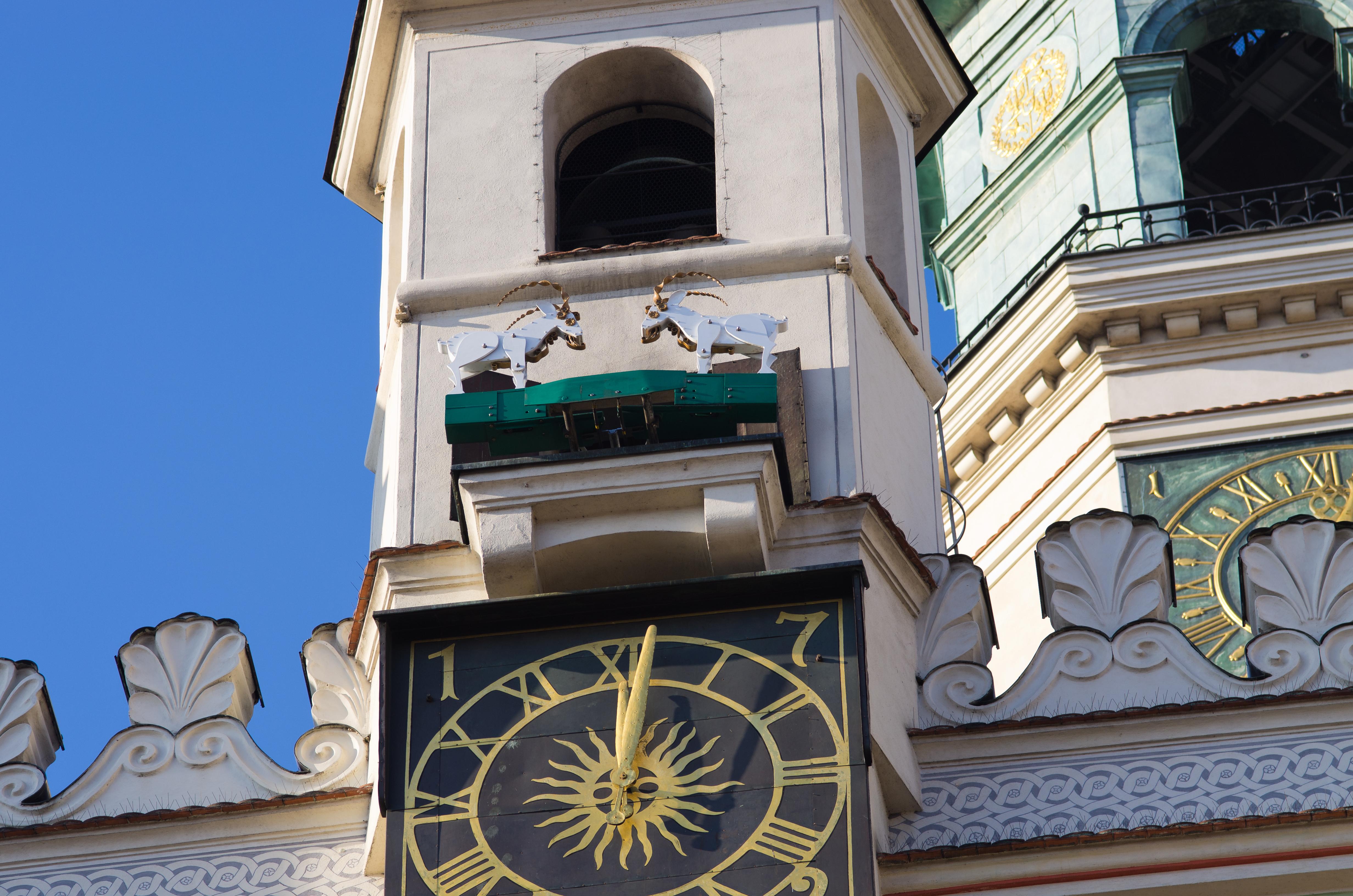 No dejes de visitar el original reloj de la torre del Ayuntamiento - Polonia Circuito Polonia al Completo y el Báltico