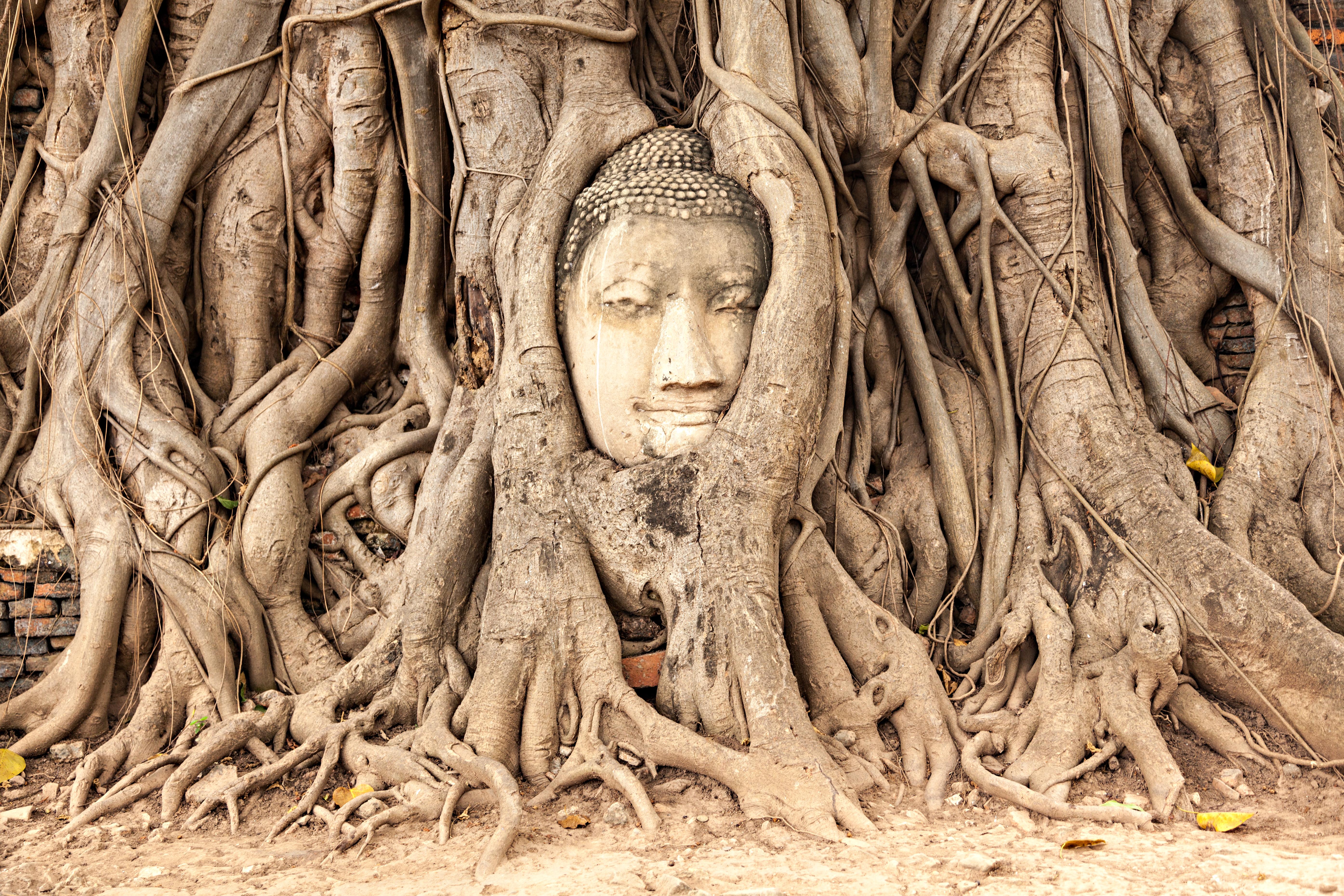 Ayutthaya, lugar donde el pasado, presente y futuro se dan la mano - Tailandia Gran Viaje Alrededor de Tailandia