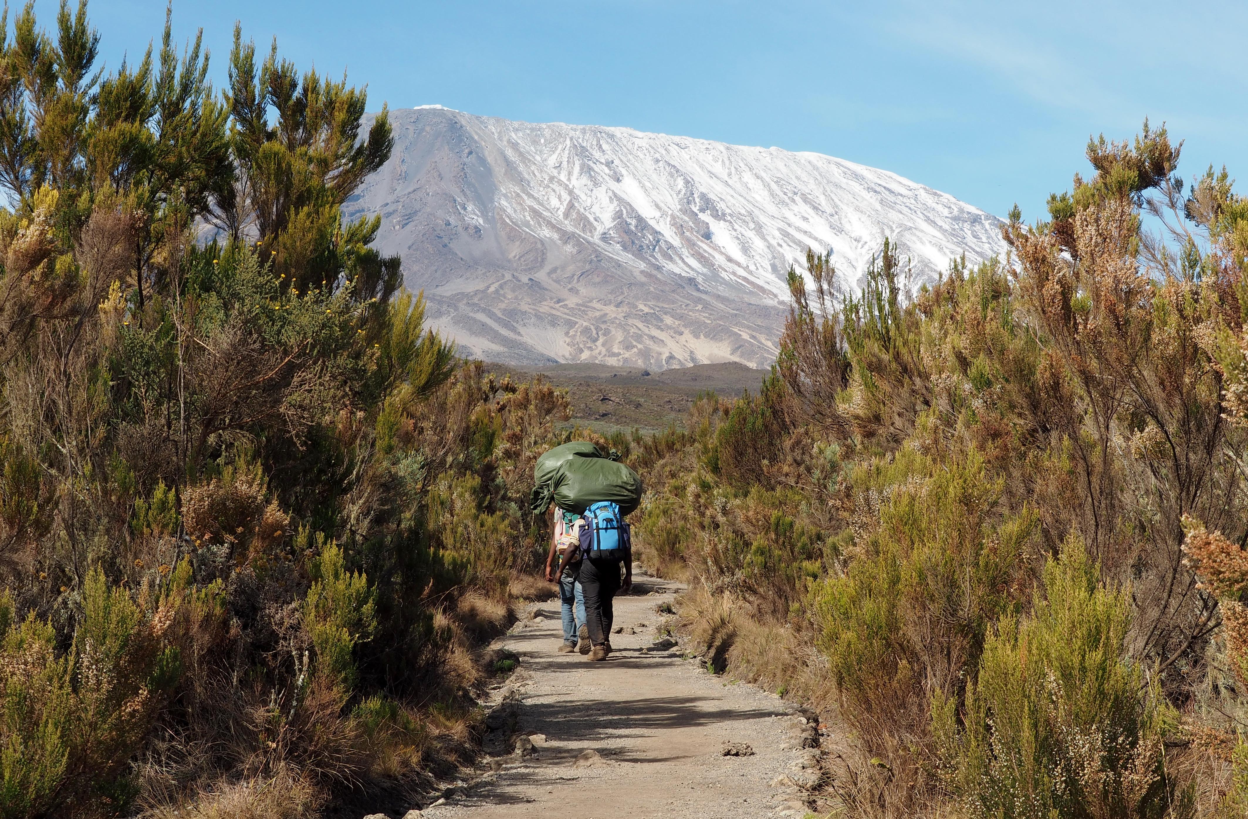 Los verdaderos protagonistas de tu ascenso - Tanzania Gran Viaje Ascensión al Kilimanjaro: Ruta Marangu