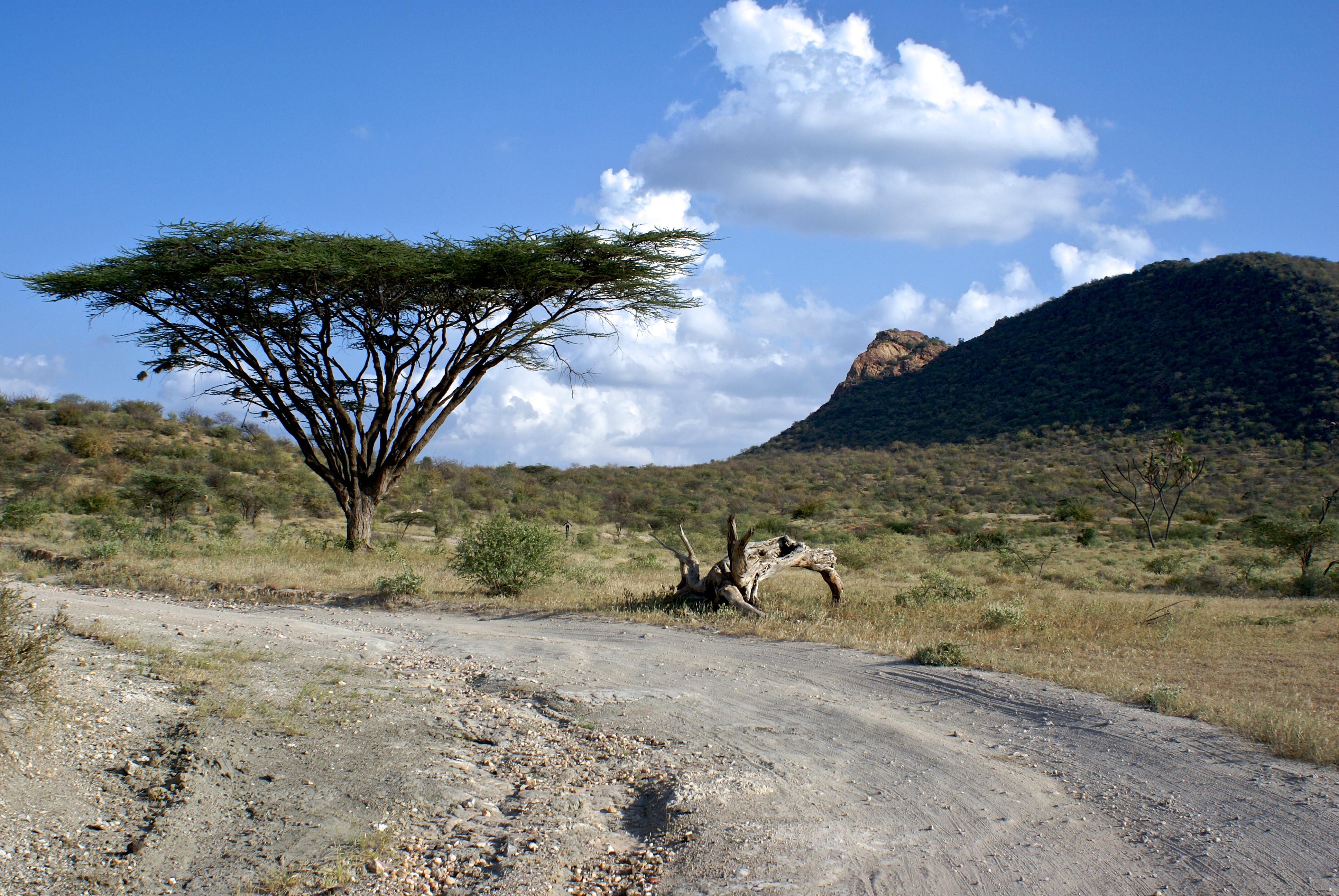 Descubre los majestuosos paisajes de la exclusiva Reserva Nacional de Shaba - Kenia Safari Safari en Kenia: Reserva Nacional Shaba
