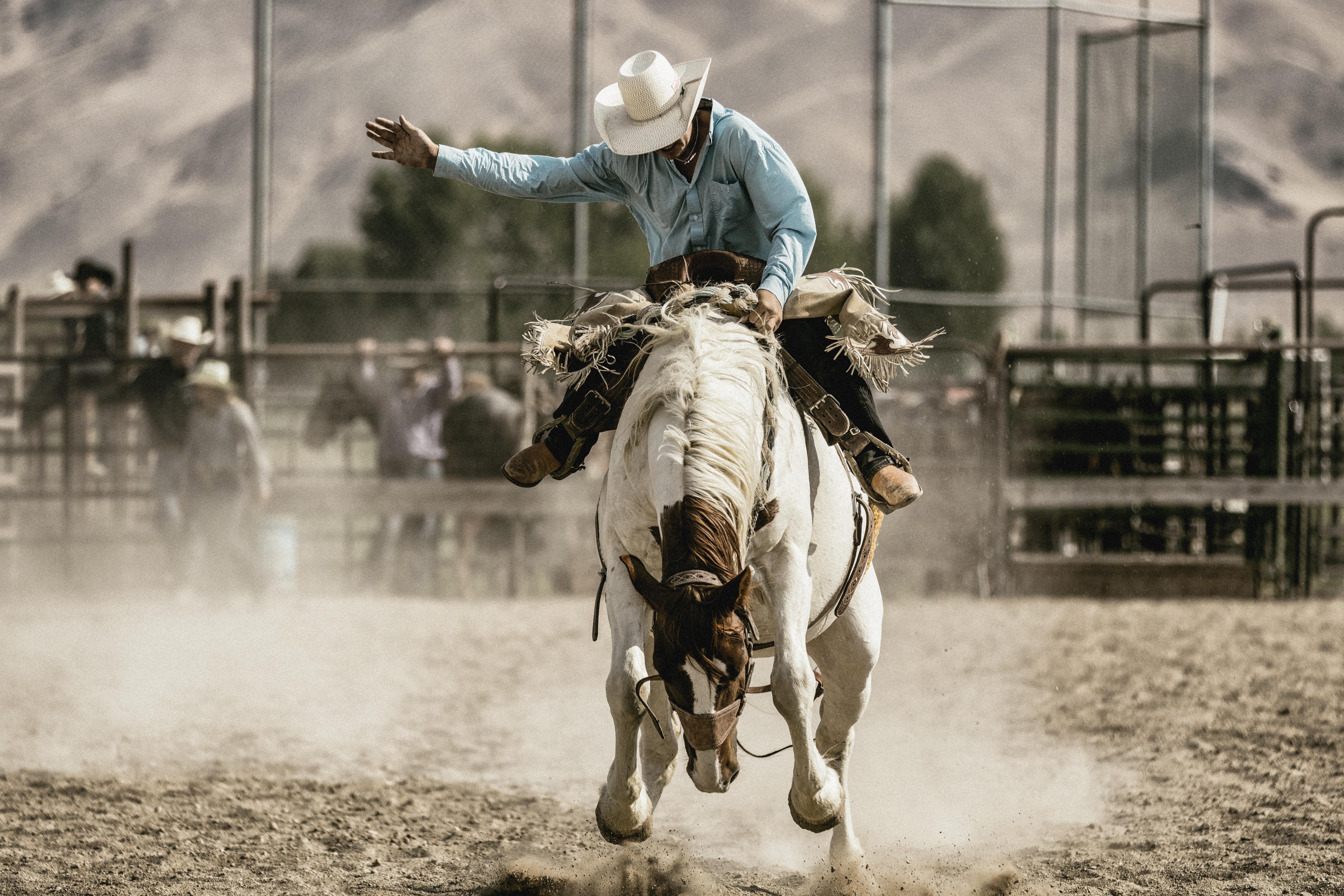Presenciar un rodeo en Calgary - Canadá Gran Viaje Rocosas Canadienses