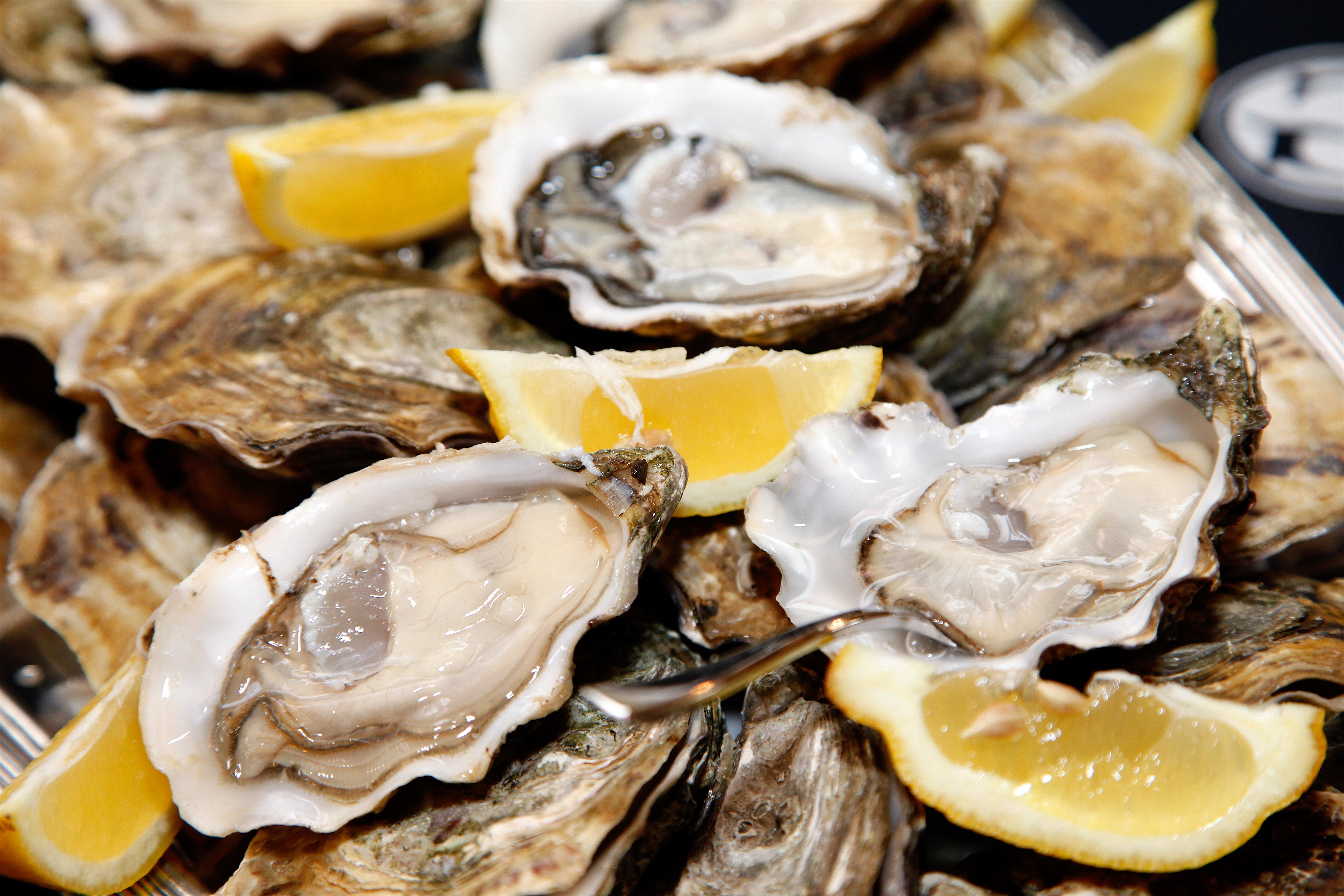 Deléitate con las mejores ostras en el festival internacional de Galway - Irlanda Circuito Irlanda Fantástica y Sur