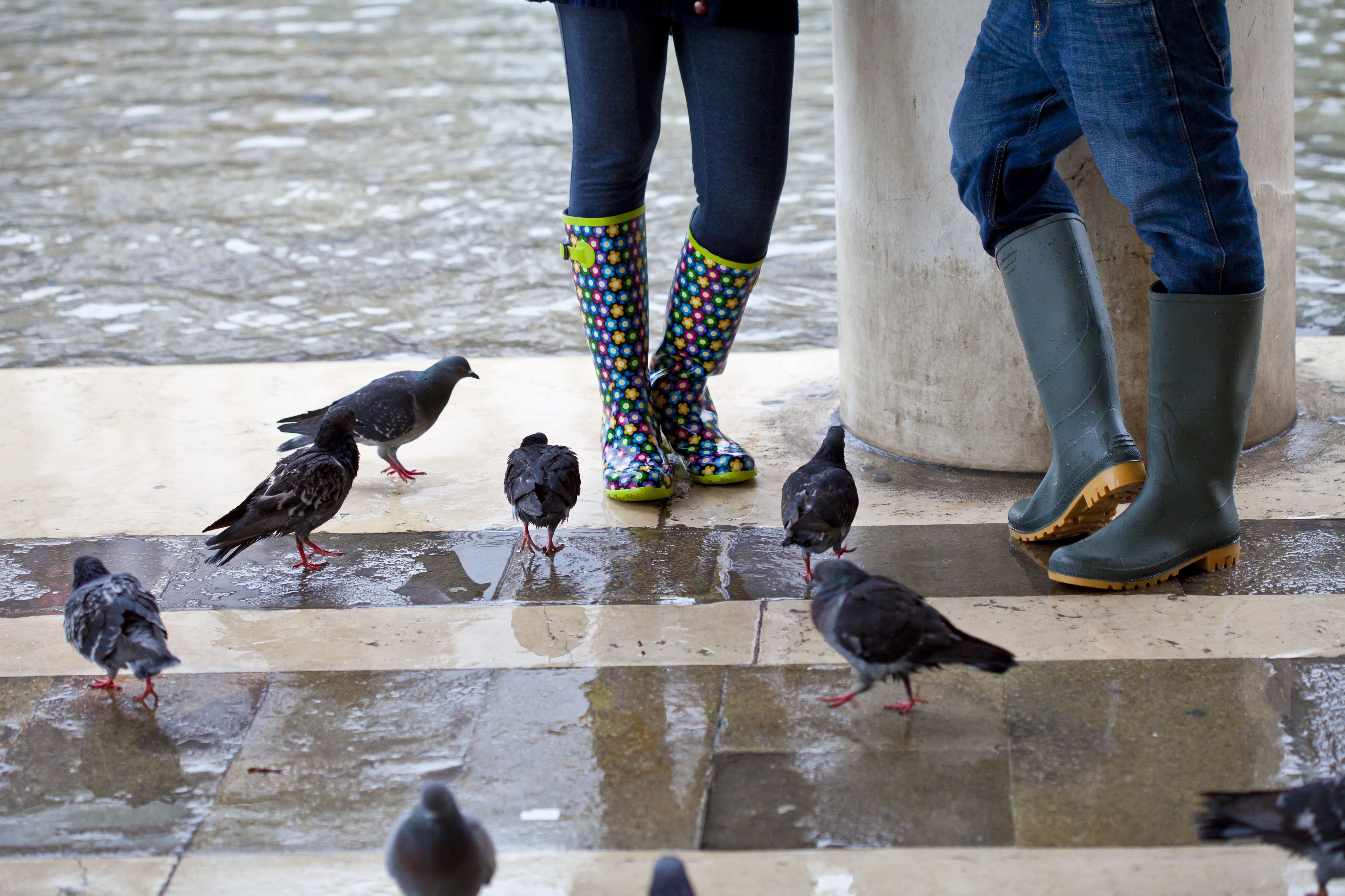 Ponte las botas de agua y pasea por San Marcos - Italia Circuito Italia Monumental: Roma, Florencia y Venecia