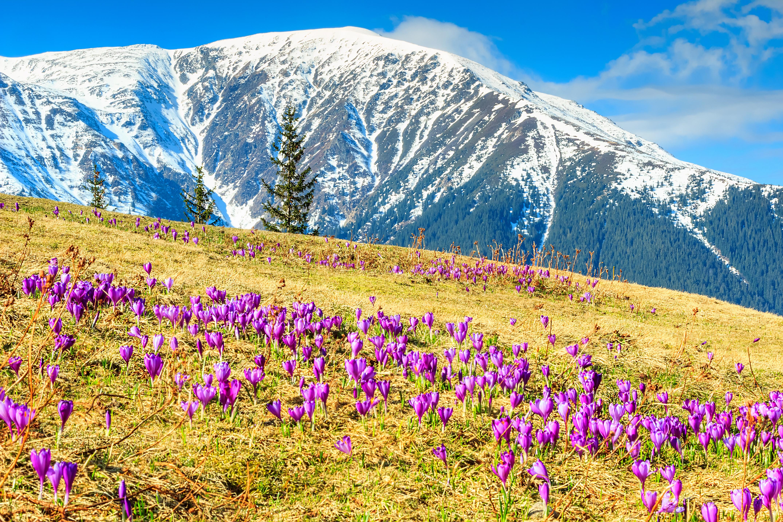 Las Montañas Fagaras, los Alpes de Transilvania - Rumanía Circuito Lo mejor de Rumanía y Bulgaria