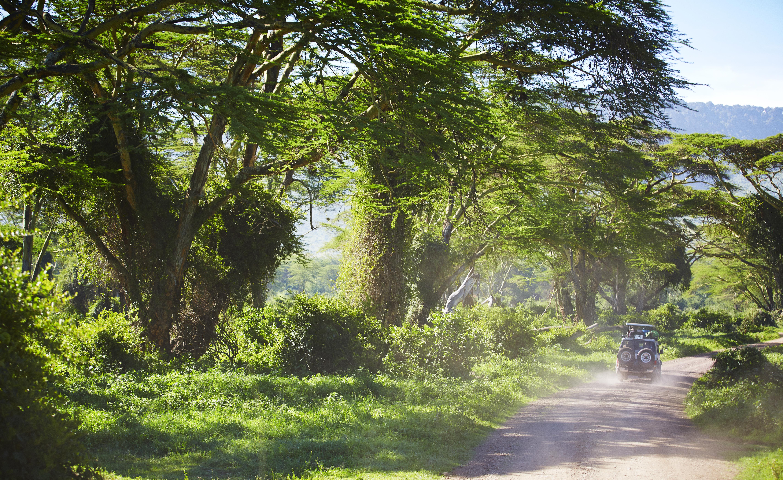 Arusha, punto de partida y epicentro de todos los safaris - Kenia Safari Safari Kenia y Tanzania: Serengeti